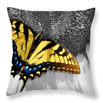 Eastern Tiger Swallow Tail  Throw Pillow