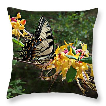 Eastern Tiger Swallowtail Butterfly Throw Pillow by William Tanneberger