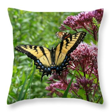 Eastern Tiger Swallowtail On Joe Pye Weed Throw Pillow by Neal Eslinger