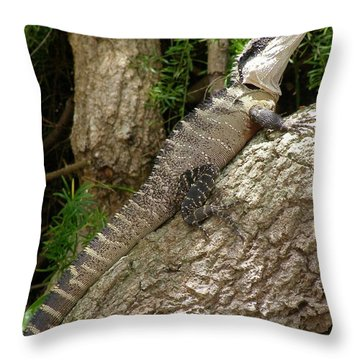 Eastern Water Dragon Throw Pillow by Bev Conover