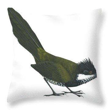 Eastern Whipbird Throw Pillow