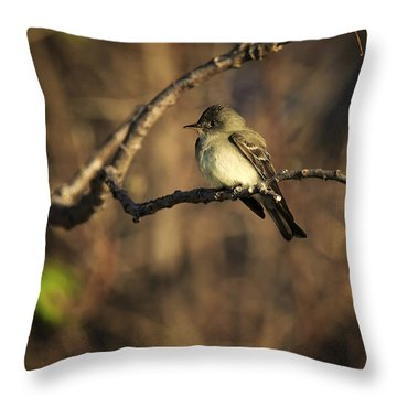 Eastern Wood Peewee Throw Pillow