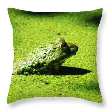 Easy Being Green Throw Pillow by Rebecca Sherman