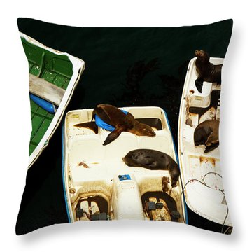 Throw Pillow featuring the photograph Easy Going by Tom Kelly