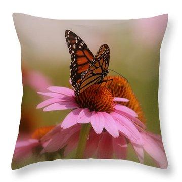 Easy Landing Throw Pillow by Kay Novy