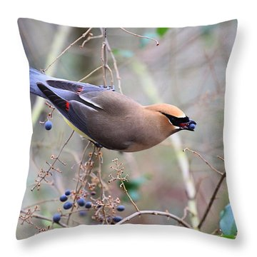 Eating Berries Throw Pillow