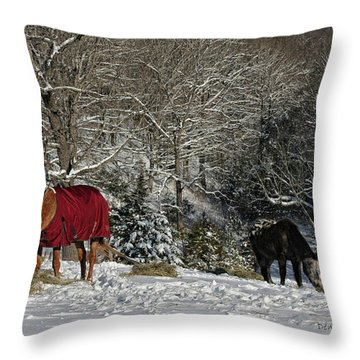 Eating Hay In The Snow Throw Pillow by Denise Romano