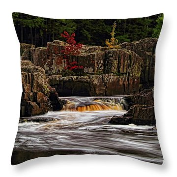 Waterfall Under Colored Leaves Throw Pillow