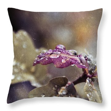 Eau De Vie - S03t03b Throw Pillow by Variance Collections