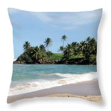 Ebb Tide Throw Pillow by Deborah  Crew-Johnson