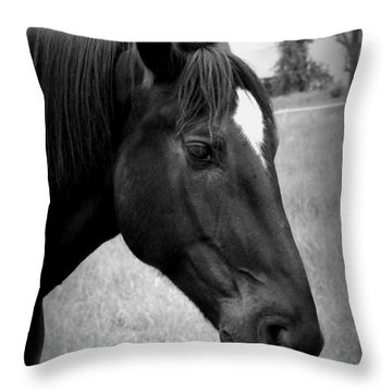 Throw Pillow featuring the photograph Ebony Beauty by Laurie Perry
