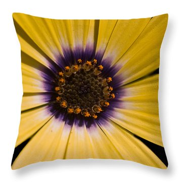 Ebullient Throw Pillow