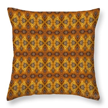 Ecclesiastes Throw Pillow by Bruce Stanfield