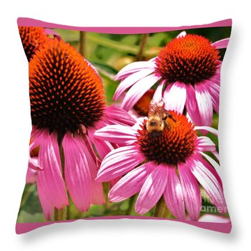 Ech 2 Throw Pillow by Robin Coaker