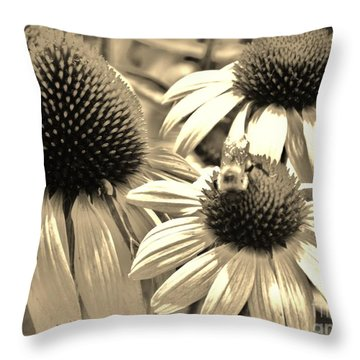 ech Throw Pillow by Robin Coaker
