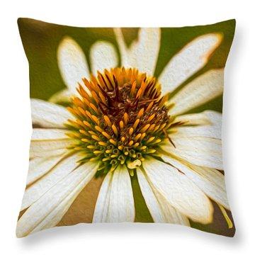 Echinacea Fading Beauty Throw Pillow by Omaste Witkowski