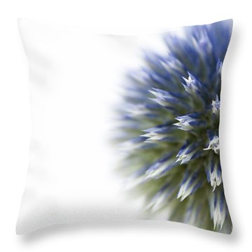 Echinops  Throw Pillow by Anne Gilbert
