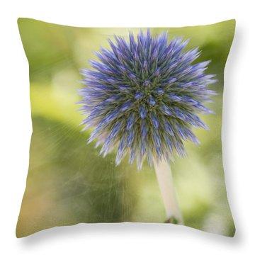 Echinops Blue Throw Pillow