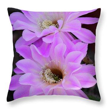 Echinopsis Aurea Throw Pillow by Saija  Lehtonen