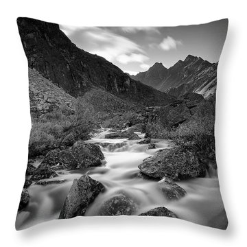 Echo Throw Pillow by Ed Boudreau