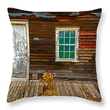 Eckley Reflection Throw Pillow