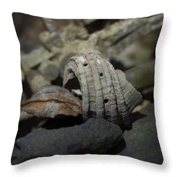Throw Pillow featuring the photograph Ecphora Gardnerae by Rebecca Sherman