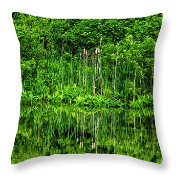 Eden 38 Oil Throw Pillow