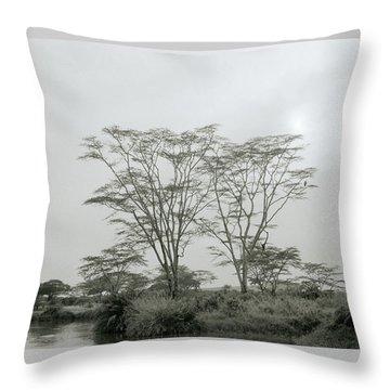 Eden Throw Pillow by Shaun Higson