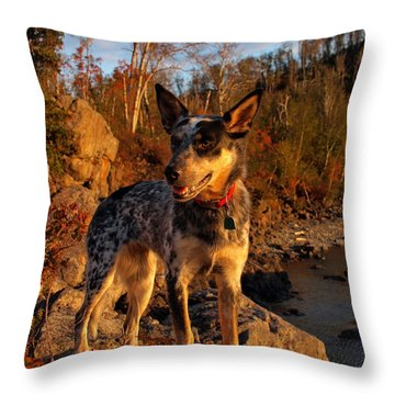 Throw Pillow featuring the photograph Edge Of Glory by James Peterson