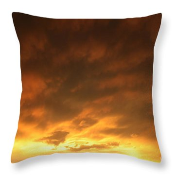 Edge Of The Eye 02 Throw Pillow by E B Schmidt