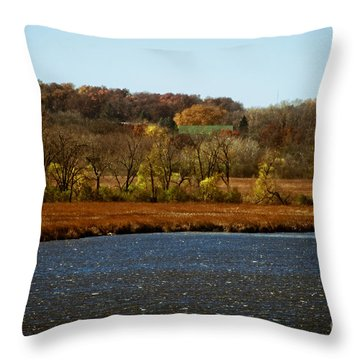 Edge Of The Marsh Throw Pillow