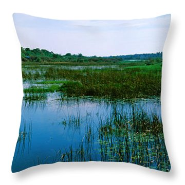 Edge Of The Okavango Delta, Moremi Throw Pillow