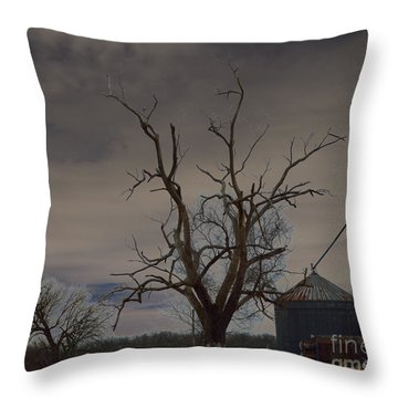Edge Of The Storm Throw Pillow by Alys Caviness-Gober