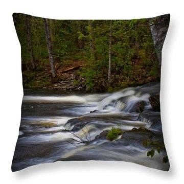 Edge Of The Stream Throw Pillow by Greg DeBeck