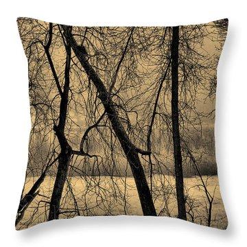 Edge Of Winter Throw Pillow by Bob Orsillo