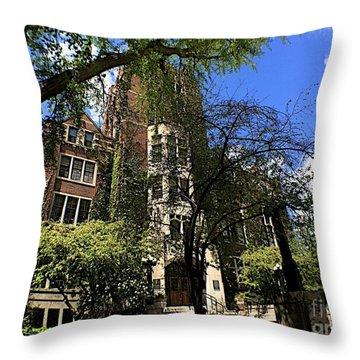 Edifice Throw Pillow