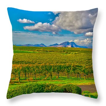 Edna Wineries Ca Throw Pillow