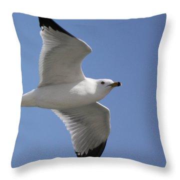 Effortless Flight Throw Pillow by Bill Woodstock