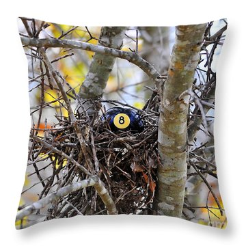 Eggstraordinary Throw Pillow by Al Powell Photography USA