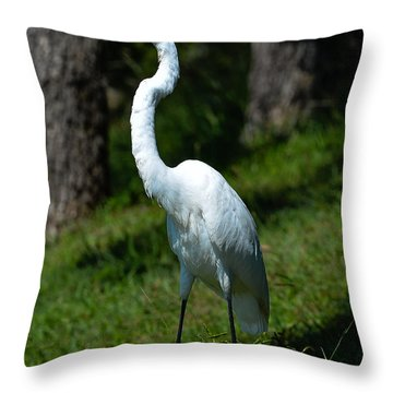 Egret - Full Length Throw Pillow