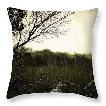 Egret At Sunset Throw Pillow