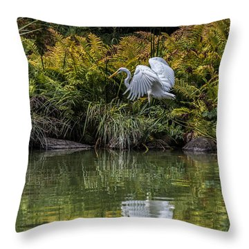 Throw Pillow featuring the photograph Egret At The Lake by Chris Lord
