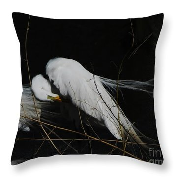 Egret Bird City At Avery Island Louisiana Throw Pillow