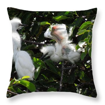 Egret Chicks Throw Pillow