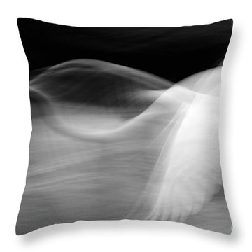 Throw Pillow featuring the photograph Egret Fantasy In Black And White by Anne Rodkin