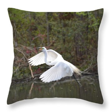 Over The Lagoon Throw Pillow by Judith Morris