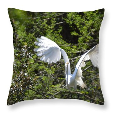 Taking Off Throw Pillow by Judith Morris