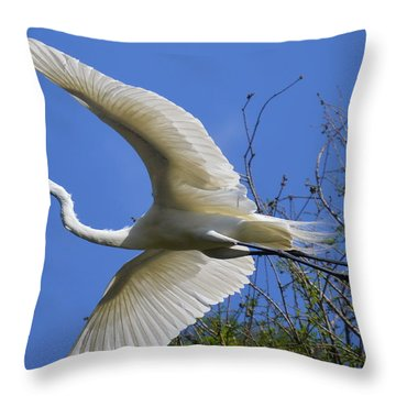 Egret Flying Throw Pillow by Judith Morris