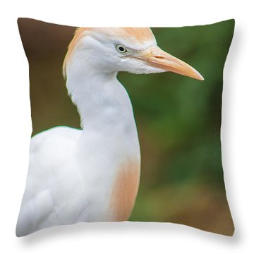 Egret From Madagascar Throw Pillow