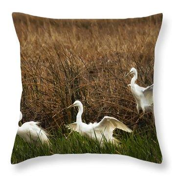 Egret Landing Throw Pillow by Belinda Greb